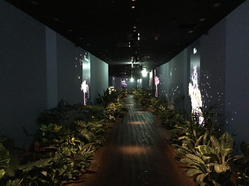 DMMオフィス廊下